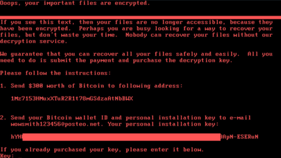 New Petya Ransomware Attack PREVENTED by Minerva Labs